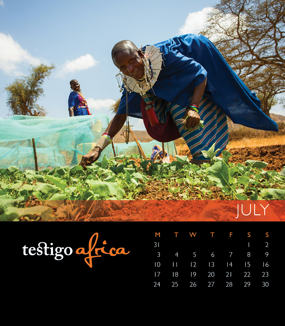 Photo of the 2017 desktop calendar July page